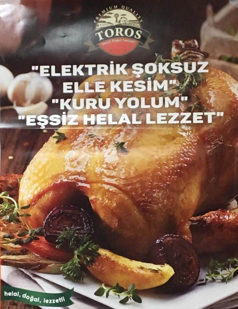 Kırklareli Gezen Tavuk